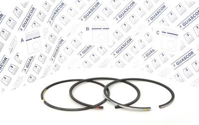 1915100 Guascor Piston Ring Set